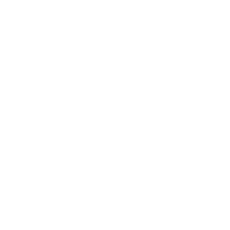 FWA - Freedom and Wealth Architect